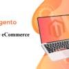 website-ecommerce-magento